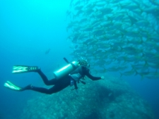Diving at Caño Island